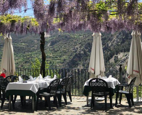 Scorching Restaurant hills