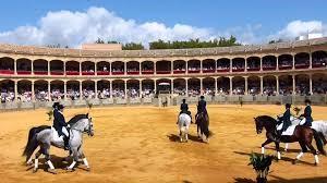 foto Caballería en la plaza de toros de Ronda (Málaga)