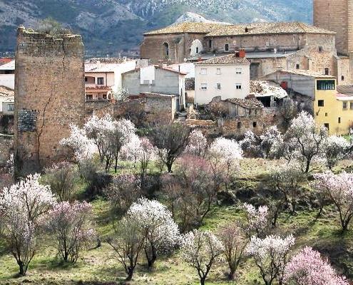 Panoramic view of Priego