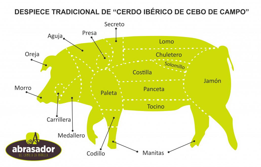 Traditional-cutting-de-pig-Iberian-de-bait-de-camp