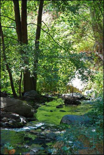 rio guadalfeo
